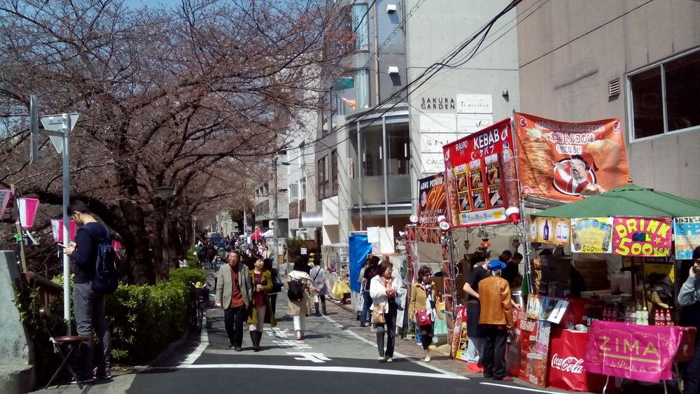 目黒川04