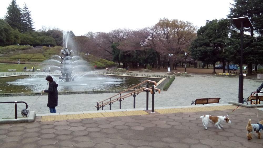 世田谷公園01
