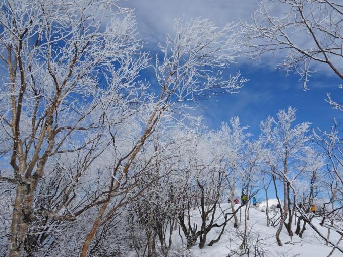 霧氷の森6