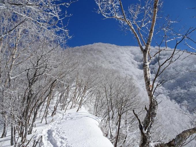 霧氷の黒檜山へ