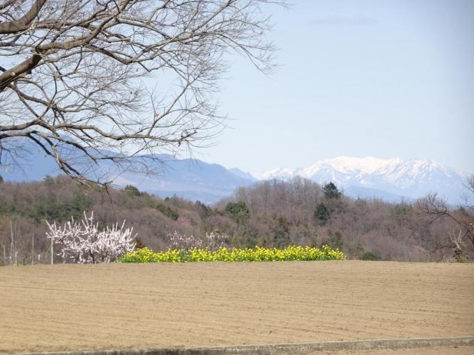 学校裏から榛名山と上州武尊山