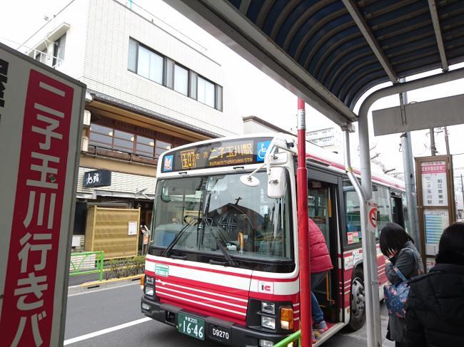 20160224_protleafohkido_01.jpg
