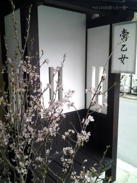 春の宮島さんぽ