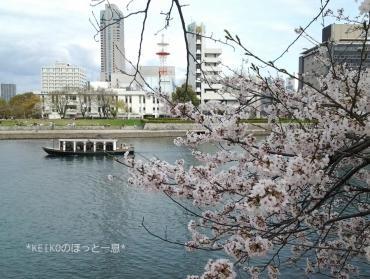 桜さんぽ6