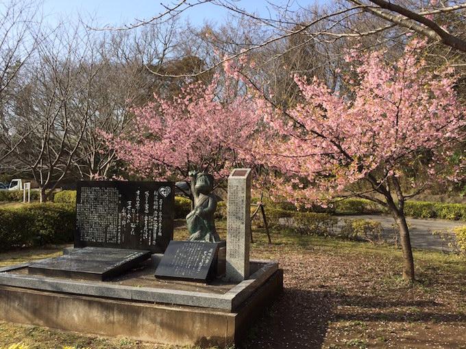 運動公園桜0308