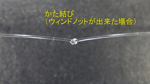 RIMG3433.jpg