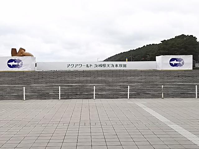 DSC_0465gupmitoooarai (10)