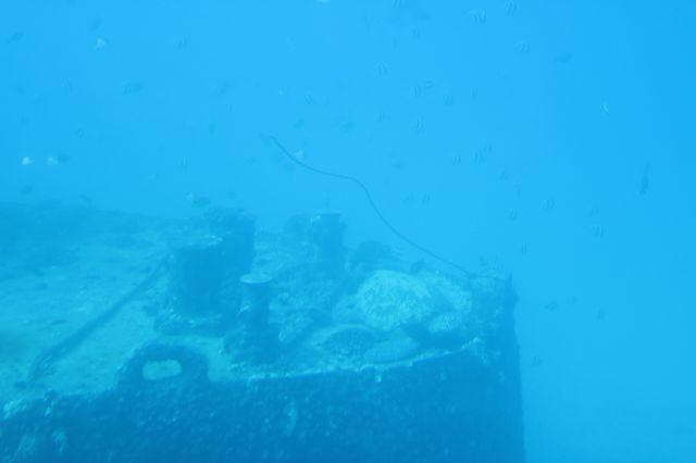 水中3(1)