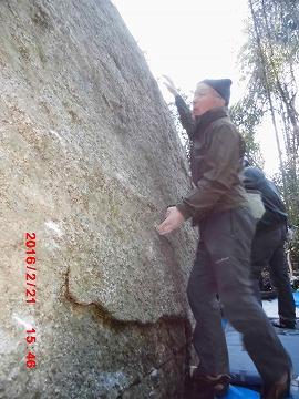 新しい岩BH本さん