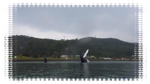 雨の1dayツアー①