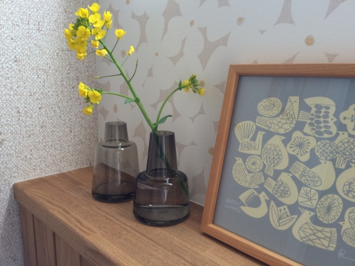 フローラ 菜の花