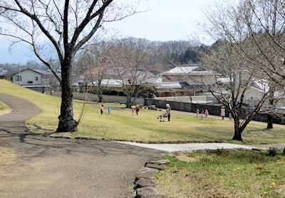 保育園のお散歩