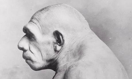 neanderthal_460x276.jpg