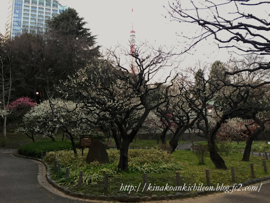 160227 Shiba park 2