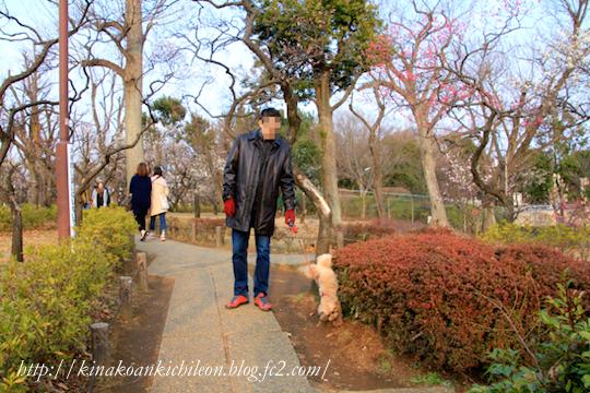 160307 Hanegi park 4