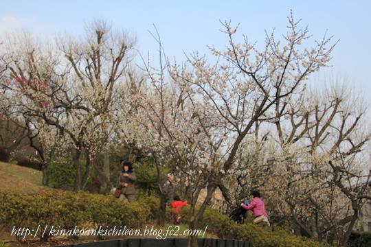 160307 Hanegi park 5