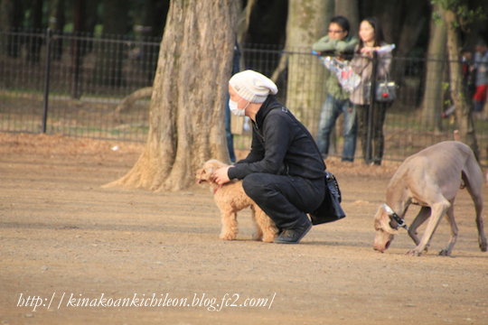 160320 Yoyogi park 12
