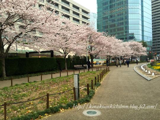 160402 Tokyo midtown 2