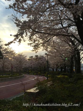 160402 Tokyo midtown 9
