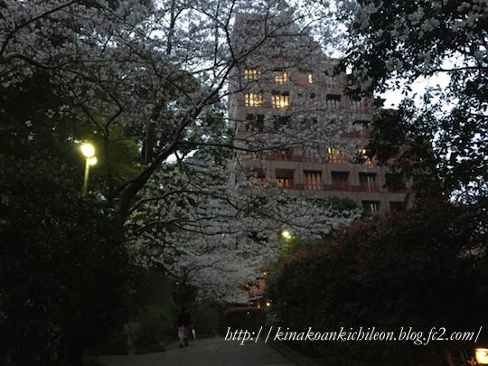160404 Shiba park 10