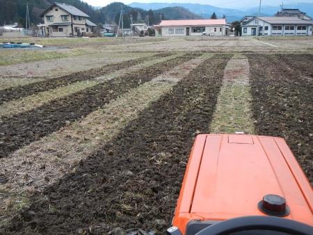 田んぼの耕起 (2)