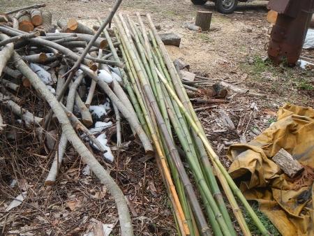 竹整備 (3)