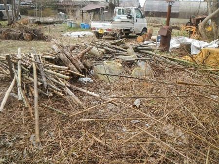 竹整備 (2)