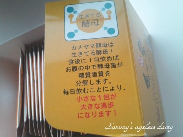 カメヤマ酵母 箱の中2