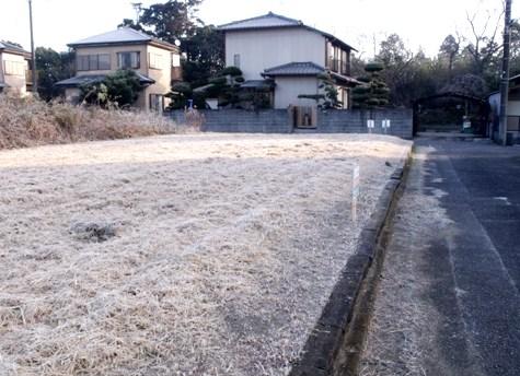 20160113 初氷 009-2