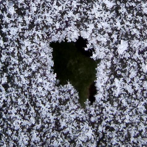 20160113 初氷 057-3
