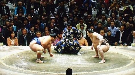 20160119 琴奨菊勝つ! 037-2