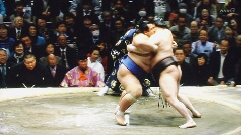 20160119 琴奨菊勝つ! 042-2