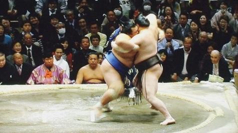 20160119 琴奨菊勝つ! 043-2
