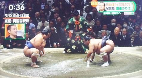 20160125琴奨菊がまた勝った! 009-2
