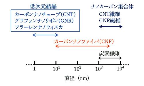 np_z01.jpg