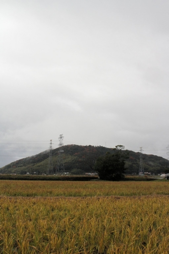 意宇の杜と茶臼山