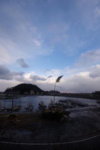 大浦の港とグロ