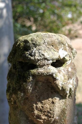 比加夜神社の狛わんこ