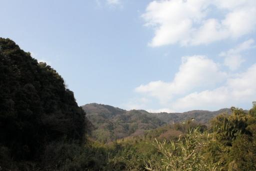 麓から見た澄水山