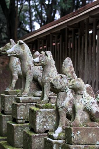 意多伎神社の稲荷社