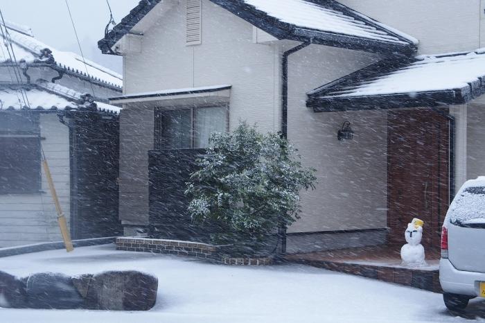 吹雪いて 1