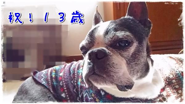 P_20160326_142931.jpg