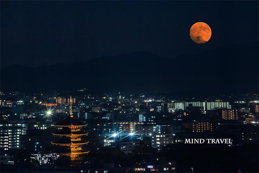 東寺 五重塔 ライトアップ 月