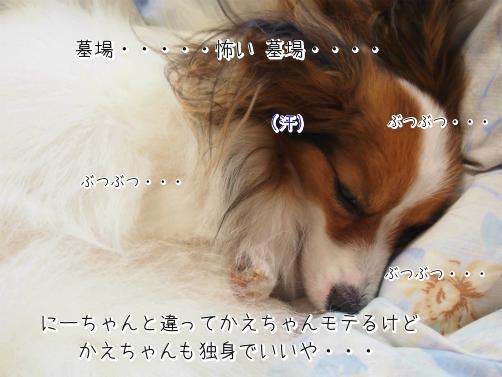3nAEL7m3初夢6