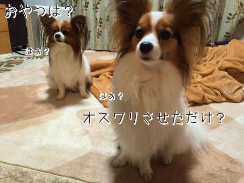 xUtwRGAtきおつけ5