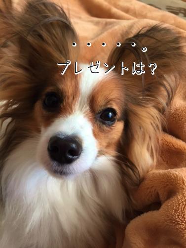 BwXuxLfqかえぷれ5