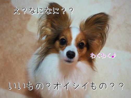 ByanBj_Eかえぷれ1