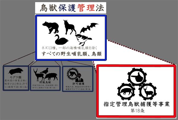 日本の動物123456