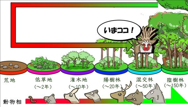 植生の変化