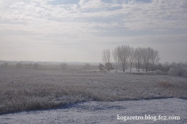 雪の渡良瀬遊水地